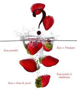 Comment décontaminer les fruits rouges ?